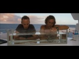 Золото дураков  (2008) Лицензия (720 HD)