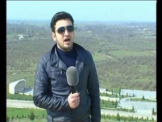 Zaur Nebioglu Arif Babayev Rengareng Agdam Anons